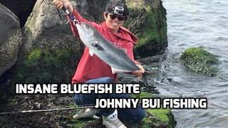 getlinkyoutube.com-Insane Bluefish Bite, Spring Bluefish, NJ 4/25/16