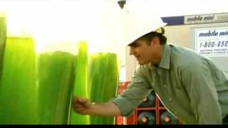 getlinkyoutube.com-GreenFuel Technologies: Growing Algae