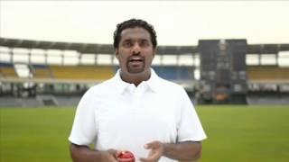 Muttiah Muralitharan reaches out to Sri Lankan Tamil community in Australia