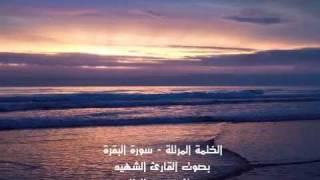 getlinkyoutube.com-القارئ الشهيد مصطفى رعد العزاوي - سورة البقرة