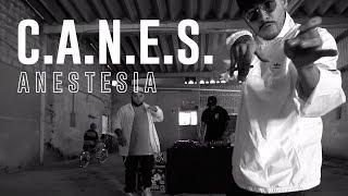 Anestesia - C.A.N.E.S. (Video Oficial)