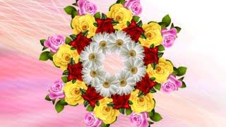 getlinkyoutube.com-Футажи (5 зеркальных на хромакее+3 цветочных орнамента)