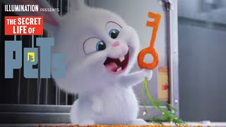 getlinkyoutube.com-The Secret Life of Pets - Kevin Hart Is Snowball (HD) - Illumination