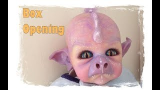 The box opening of my dragon hybrid reborn baby ......  created by the Twisted Beanstalk Nursery