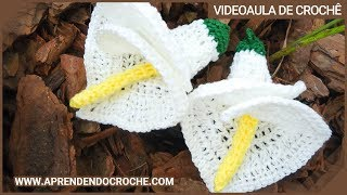 getlinkyoutube.com-Flor de Croche Copo de Leite - 1º Parte