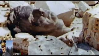 getlinkyoutube.com-Adolf Hitler Bio Colour #5 ) Film Documentary