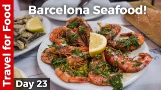 Unbelievable Shrimp and Grilled Sardines in Barcelona and FC Barcelona Camp Nou Tour
