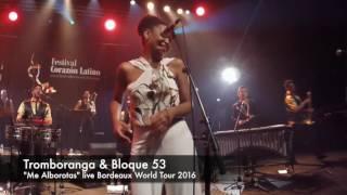 """Tromboranga & Bloque 53 live """"Me alborotas"""" en vivo en Bordeaux, Festival Corazon Latino"""