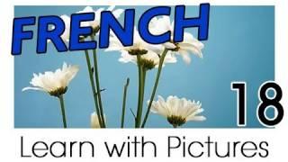 getlinkyoutube.com-Learn French - French Plants Vocabulary