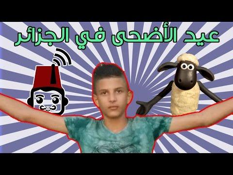 عيد الأضحى في الجزائر MR 05 يونس صالحي