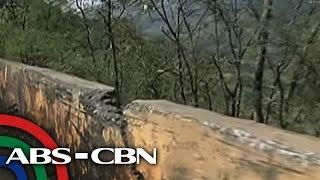 TV Patrol: Bangin sa Carranglan: kulang sa concrete barriers, traffic signs