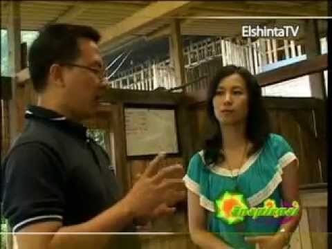 Inspirasi ELSHINTA TV Susu Kambing Etawa Organik 'MIM'