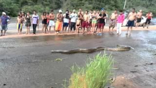 getlinkyoutube.com-Anaconda en el tobogan de la selva