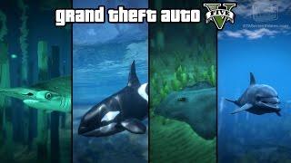 getlinkyoutube.com-GTA 5 - Play as a Fish (Shark, Dolphin, Orca, Stingray & more) [PS4 & Xbox One]