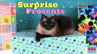 getlinkyoutube.com-Surprise Presents Blind Box Opening | Tokidoki Radz Mega Bloks AG | PSToyReviews
