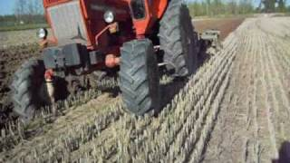 getlinkyoutube.com-Belarus MTZ 80 in aratura