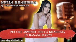 PUCUKE ASMORO - NELLA KHARISMA FT DANANG DANZT Karaoke