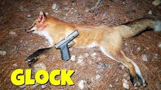 getlinkyoutube.com-Predator Hunting With Glock 19! 9mm Predator Hunting!