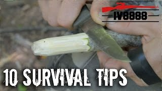 Top 10 Survival Tips