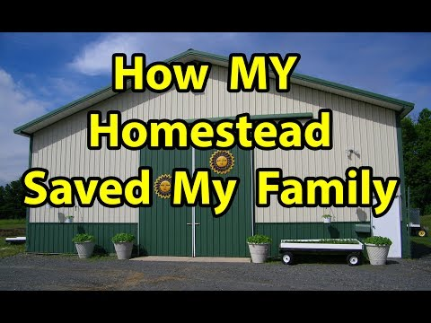 How My Homestead & Organic Gardening SAVED my Family