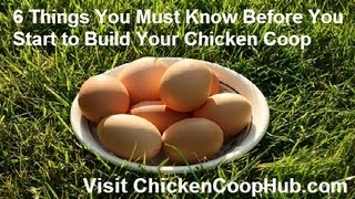 Chicken Coop Plans - 6 Critical Tips You Must Know