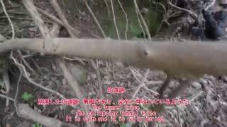 getlinkyoutube.com-No.31-1 鉱山坑道探検