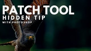 The Hidden Trick to Photoshop's Patch Tool width=