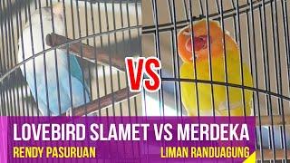 Lovebird Slamet VS Merdeka Di Walikota Cup Probolinggo