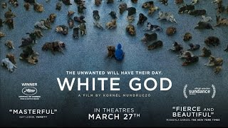 getlinkyoutube.com-White God - Official Trailer