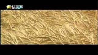 getlinkyoutube.com-kurdish music.vidio clip.rahim fayzi.music.simko fayzi....margi joodaieمه رگی جوودایی