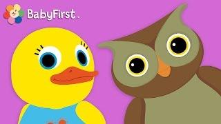 getlinkyoutube.com-Owl   Learn Animals and Animal Sounds   Tillie Knock Knock   BabyFirst TV