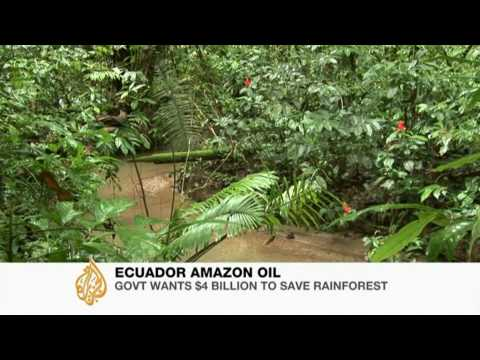 Ecuador wants money not to drill in Amazon - 27 Oct 09