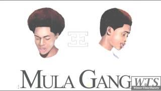 getlinkyoutube.com-Mula Gang - When You See Us (New Song)