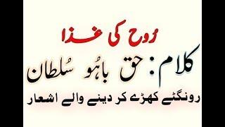 Kalaam HAZRAT SULTAN BAHU_Heart Touching Voice By Zaman Ali