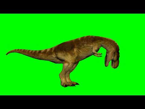 dinosaur T-Rex eats - green screen effect