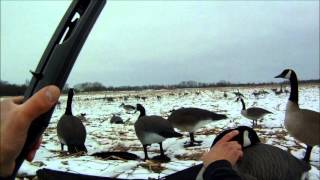 getlinkyoutube.com-GoPro Goose Hunting