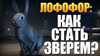 getlinkyoutube.com-GTA 5 - Как Играть за Животных? (Лофофоры) #9
