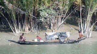 getlinkyoutube.com-BURIRDABRI SUNDARBAN