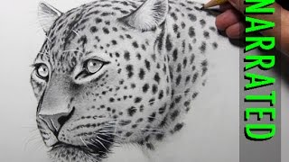 getlinkyoutube.com-How to Draw a Leopard [Narrated, Step by Step]