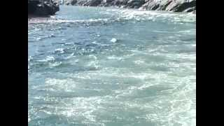 getlinkyoutube.com-Gomukh Se Ganga Sagar (Documentary Film)