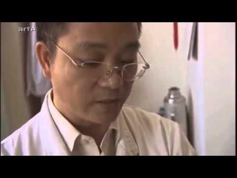 Séance d'acupuncture en Chine + Explications - Dr Wang - Extrait d'un documentaire cité plus bas.