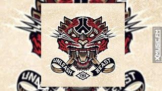 Wildstylez - Unleash the Beast