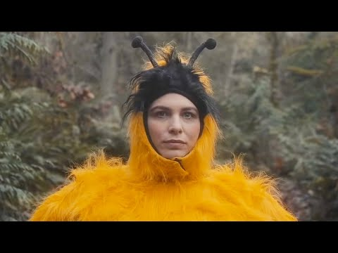 """The Head and The Heart """"Honeybee"""" Official Music Video"""