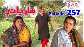 Hareyani Ep 257  Sindh TV Soap Serial    6 7 2018   HD1080p  SindhTVHD Drama