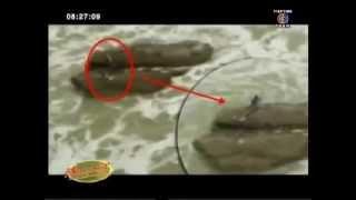 getlinkyoutube.com-คลิป เจอนางเงือกกลางทะเล ພົບນາງເງືອກແຄມທະເລ