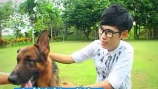 getlinkyoutube.com-Pet Lover by Jerhigh : น้องทางบ้านซื้อหมาอารักขา