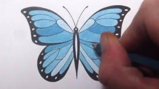 getlinkyoutube.com-How To Draw a Butterfly