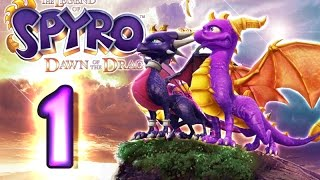 getlinkyoutube.com-The Legend of Spyro: Dawn of the Dragon Walkthrough Part 1 (X360, PS3, Wii, PS2) 100% The Catacombs