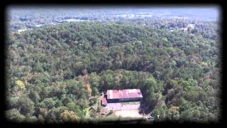Springville, AL - Alabama Land For Sale - 100 Acres