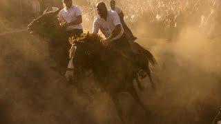 Dangerous horses race: Sardinia Ardia Sedilo 2016